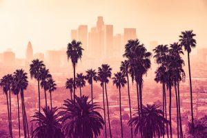 Top trending wood flooring in Los Angeles
